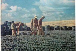 Zwykły przedmiot jako kolekcjonerski rarytas. Rzecz o niemieckich kanistrach wojskowych z okresu II wojny światowej