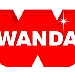 Wanda: po prostu efektywnie